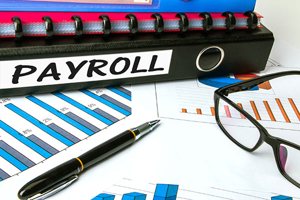 Carte Hall offers a variety of business payroll services & options in Elkins, WV
